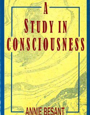 114-studyCONSC